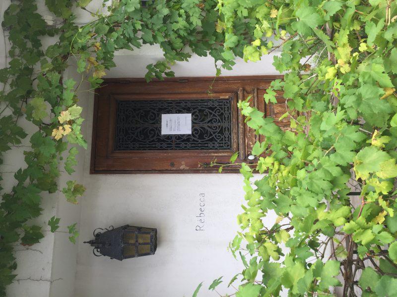 【2020.1/11オープン♪】百舌鳥八幡宮の近くに、こだわりの創作精進◆古民家カフェ『momonoki 百舌鳥』がオープン!: