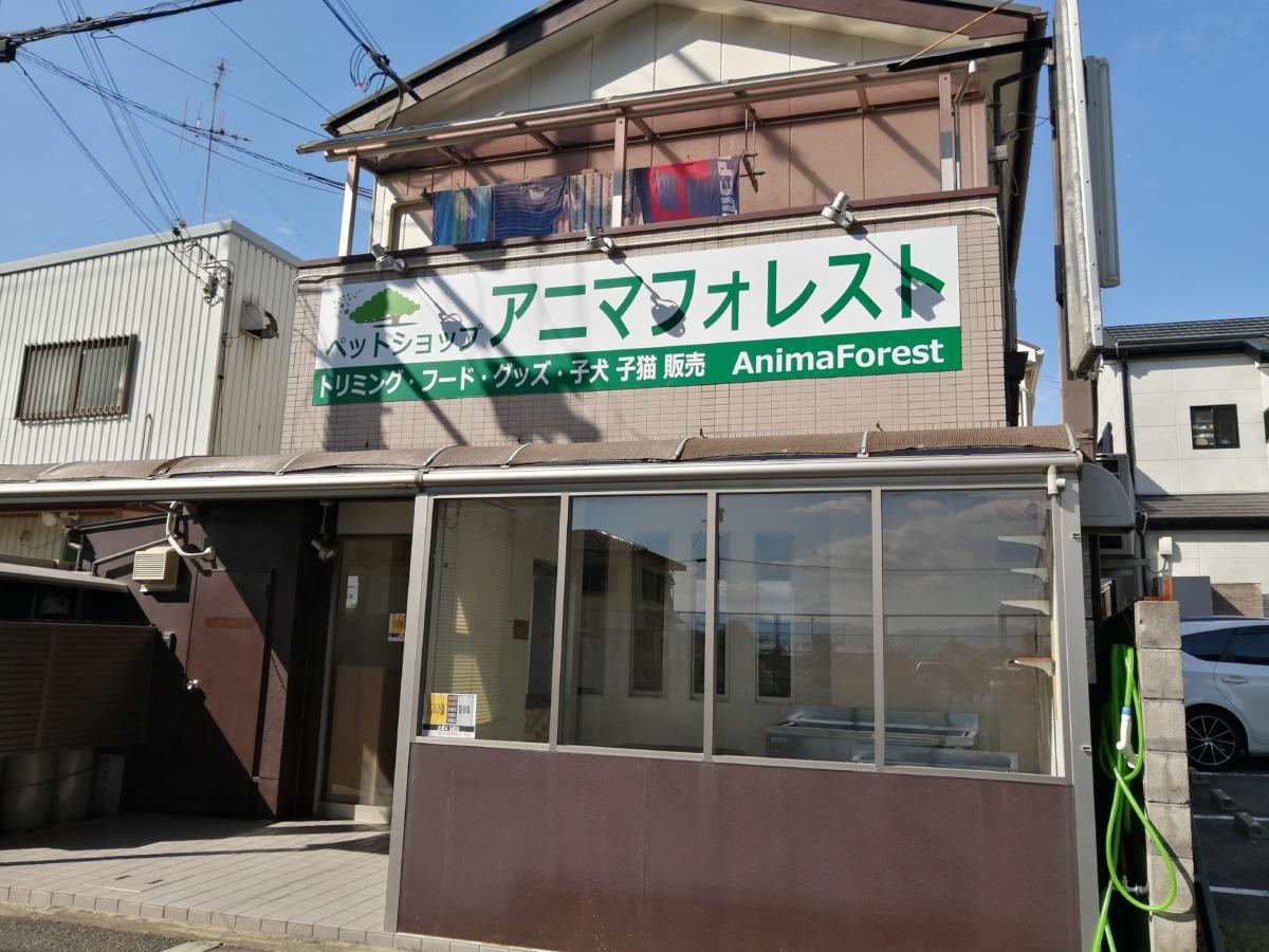 【2020.10/16移転グランドオープン】堺市西区・べスピアにあったペットショップ『アニマフォレスト』が移転したよ!: