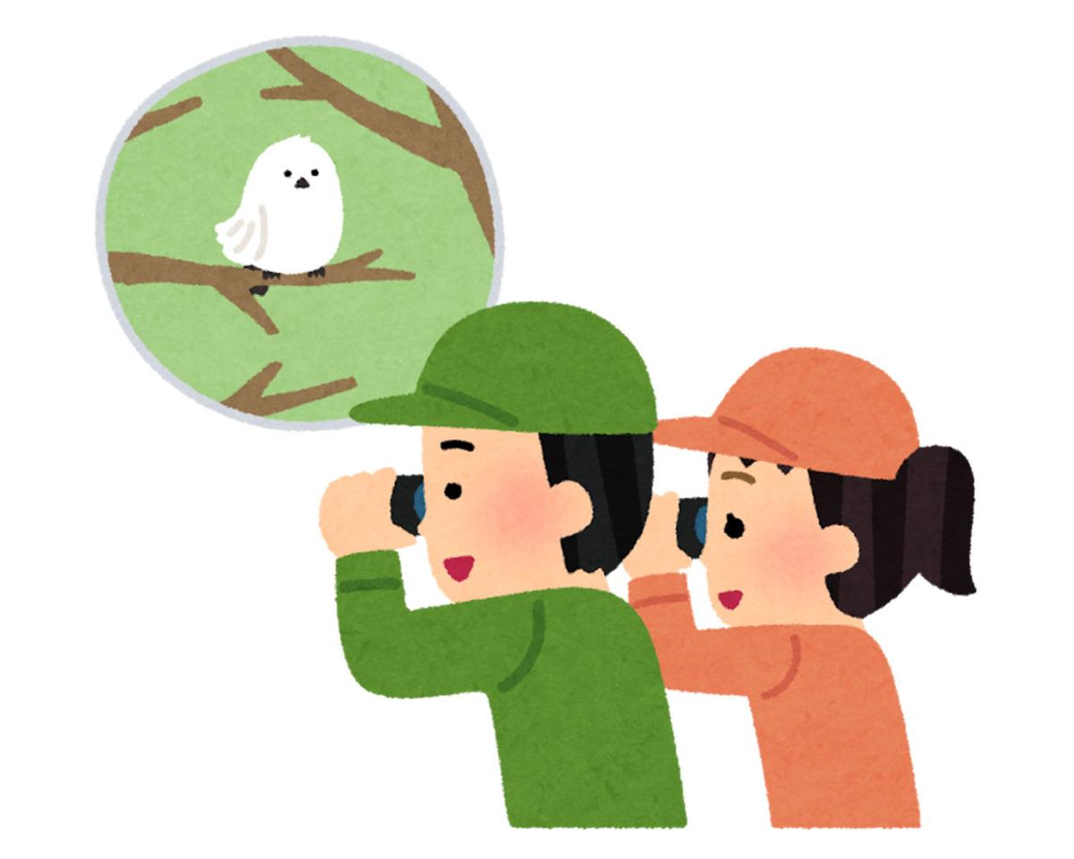 【2021.1/9(土)開催☆】富田林市・錦織公園で『冬の野鳥観察会』が行われるよ!バードウォッチング楽しそう♪: