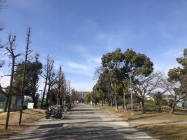 【2022.4月開設予定】堺市北区・金岡公園の一部に「堺市では初となる公園内保育施設」ができるみたい!:
