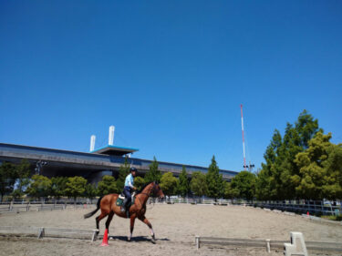 春★レッスン無料の乗馬体験‼年齢に応じて楽しめるスポーツ乗馬、小学生〜70代の方まで乗っていただけます: