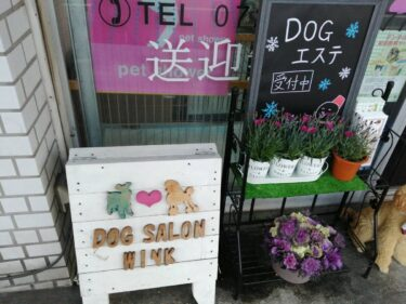 【リニューアル情報!】最新ドッグエステと老犬トリミングが自慢のお店『DOG SALON WINK(ドッグサロン ウインク)』がリニューアルされるそうです!!:
