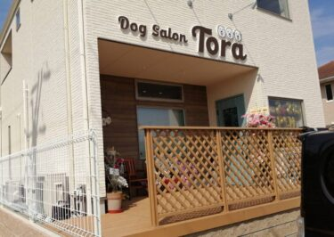 【2021.2/28オープン♪】河内長野市・看板犬グレートピレニーズの虎之君が出迎えてくれる『Dog Salon Tora』がオープンしましたぁ~♪: