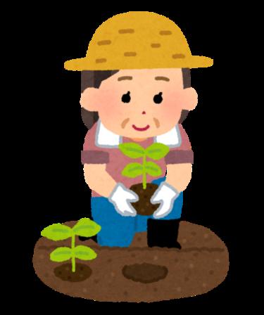 【2021.5/15から全8回開催】堺市北区・大泉緑地で全8回の園芸講座『令和3年度 癒しの園芸講座』の受講生募集!申込みは4/1(木)から!: