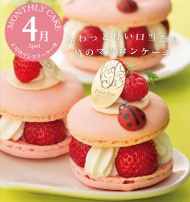 4月のマンスリーケーキは何?オシャレでかわいい!苺のマカロンケーキ「コクシネル」花とお菓子の工房『フランシーズ』: