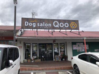 【2021.4/10オープン】大阪狭山市・コノミヤ狭山店の敷地内に『ドッグサロン Qoo』がオープンしましたよ~!: