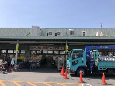 【オープン日が分かりました♪】堺市中区・深井『ジャパン堺深井店』の中に「スギ薬局堺深井調剤店」がオープンしますよ~!: