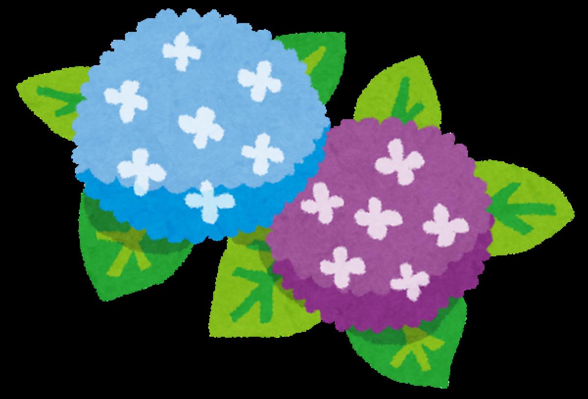 【2021.6/13(日)開催】堺市北区・大泉緑地で無料の講習会『あじさいの楽しみ方・管理方法』開催!申し込みは5/13(木)から!!: