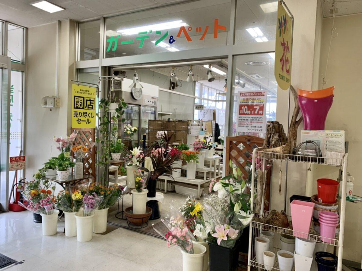 【2021.9月末閉店!】堺区・イズミヤ百舌鳥店1階にある『ガーデン&ペット フジイ』の閉店日が判明しました・・・。: