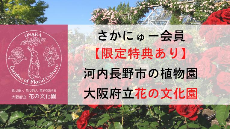 【さかにゅー会員特典あり!】素敵な花に囲まれて日々の暮らしに彩りを!河内長野の広大な植物園『大阪府立 花の文化園』: