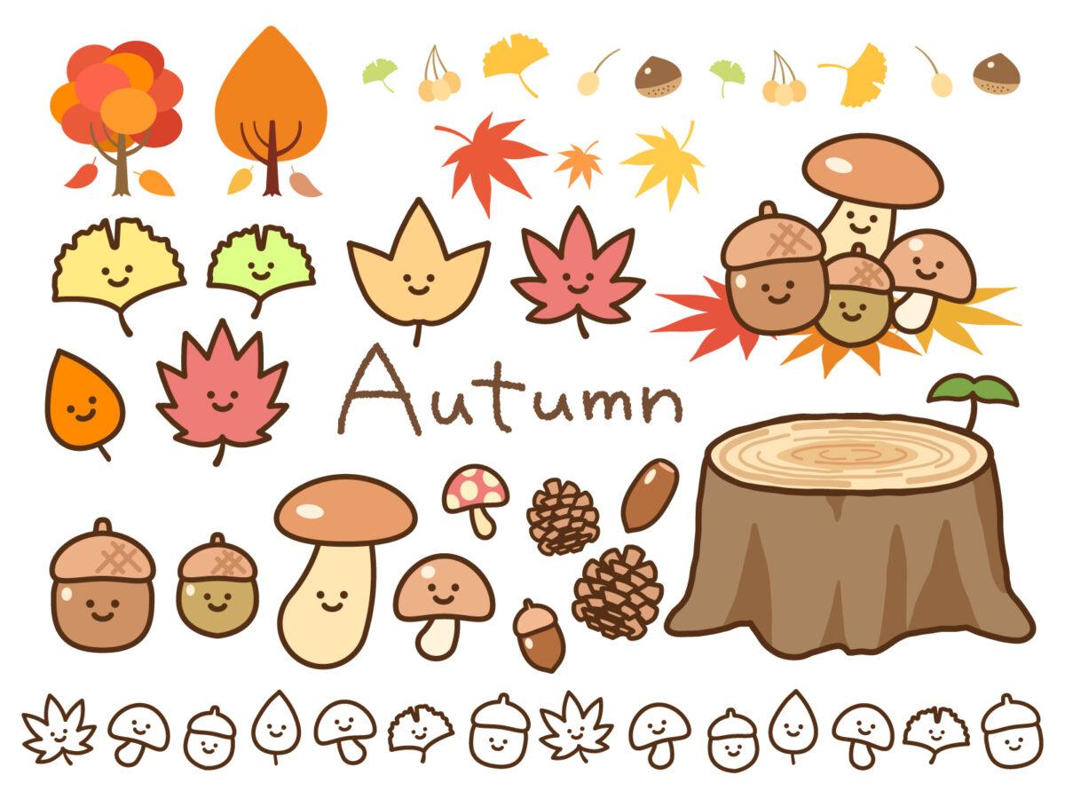 ズバリこれ!『秋の過ごし方と言えば・・・?』さかにゅー会員が投票!気になる結果は…: